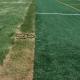 infill_grass_divider